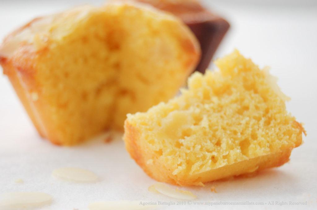 fetta e muffin-1 copia