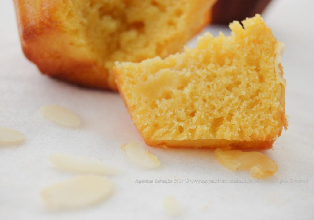 muffin p p fetta-1 copia