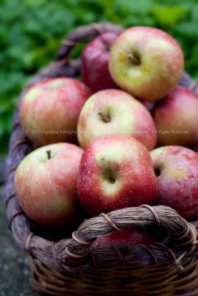 le prime mele