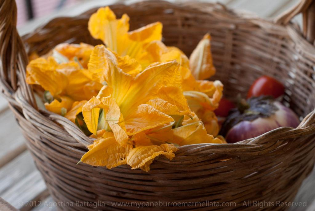 raccolto - fiori zucca