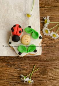 DSC_0024 cookie ladybug
